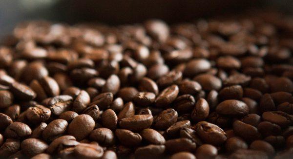 bahan-kopi-robusta